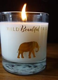 Coconut Wax Candle Dream Vegan, Organic
