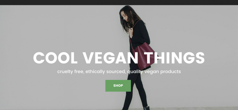 Cool Vegan Things Officially Launches!